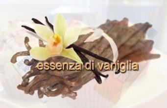 logo di essenza di vaniglia