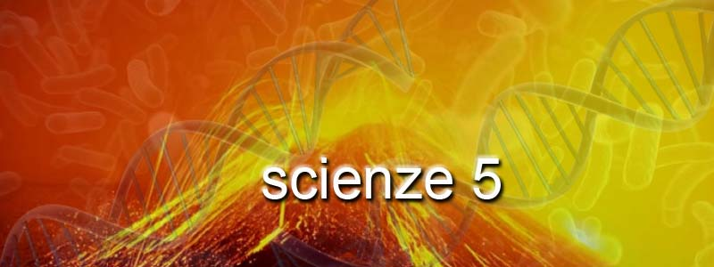 scienze 5
