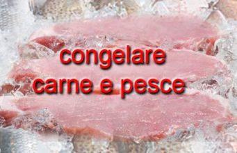 logo-congelare-carne-e-pesce